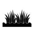 grass with ground vector image vector image