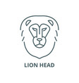 lion head line icon linear concept vector image vector image