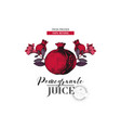 pomegranate juice logo template vector image vector image
