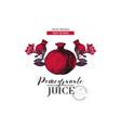 pomegranate juice logo template vector image vector image