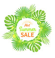 summer sale emblem palm leaves seasonal discount vector image vector image
