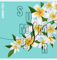 summertime floral poster tropical plumeria flowers vector image vector image