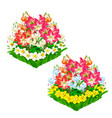 two beautiful flower beds isolated vector image vector image