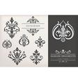 Vintage Damask Ornaments vector image vector image