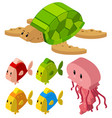 3d design for fish and turtle vector image vector image
