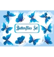 Blue Butterflies in Sky with Clouds vector image