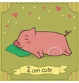 Cute Sleeping Pig vector image vector image