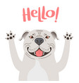 greeting card with cute pitbul dog sweet american vector image vector image
