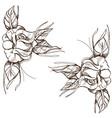 hand drawn roses floral design element outline vector image vector image