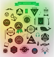Hipster style elements icons and labels vector image vector image