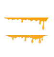 horizontal drops of honey vector image vector image
