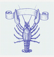 lobster hand drawn sketch vector image