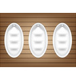 mock up realistic empty oval shelves for interior vector image