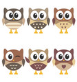 set cute brown owls isolated on white vector image vector image