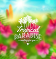 Type design with tropical nature vector image vector image