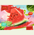 watermelon juice sweet fruits 3d realistic vector image vector image