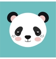 cute panda bear isolated icon design vector image