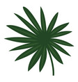 fan palm icon cartoon style vector image vector image