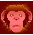 Fire Monkey symbol 2016 vector image vector image