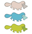 funny cartoon platypus in different colors vector image vector image