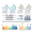 infographics and pie diagram with figures data vector image vector image