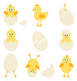 Set cartoon chickens for easter design