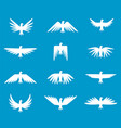 set pigeons silhouettes white dove peace vector image