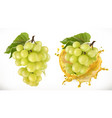 white sweet grapes and juice splash fresh fruit vector image vector image