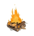 Bonfires flame isolated vector image