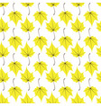maple leaves seamless white yellow art vector image vector image