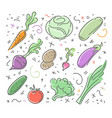 set of vegetable icons in flat style vector image