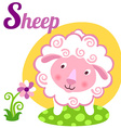 SheepL vector image vector image