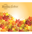 Vintage autumn leaves transparency background vector image vector image