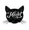 black cat icon vector image vector image