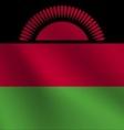 Malawi flag vector image vector image