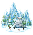 penguins and owl by the igloo vector image vector image