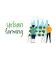 urban farming hydroponics gardening in city vector image