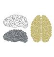 Brain Head Mind vector image vector image