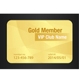 Gold VIP Club Card vector image vector image