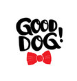 good dog brush lettering with red bow tie vector image