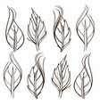 hand drawn set of rose leaves outline on white vector image