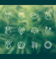 harvest farming linear icons vector image vector image