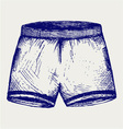 Swimming trunks vector image vector image