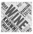 The Beauty Of Sparkling Wine Word Cloud Concept vector image vector image