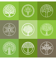 tree logo set vector image vector image