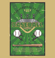 baseball game stadium field with balls and bat vector image