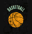 basketball typographical vintage grunge poster vector image
