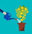 businessman hand watering money tree vector image vector image