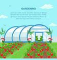 gardening farming social media banner template vector image vector image