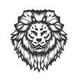 lion head design on white background head vector image